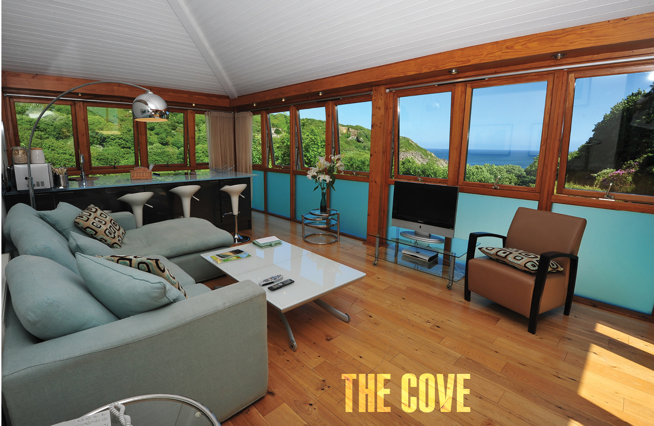 SLiNK Issue002thecove2